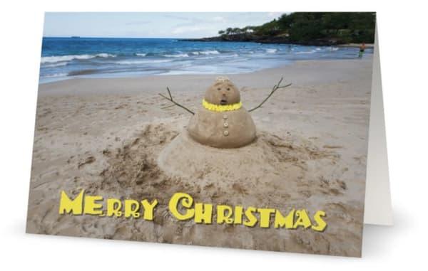Merry Christmas Sandman | Bird In Paradise