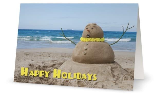 Happy Holidays Sandman | Bird In Paradise