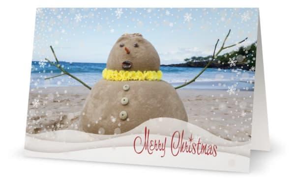 Merry Christmas Snowy Sandman | Bird In Paradise