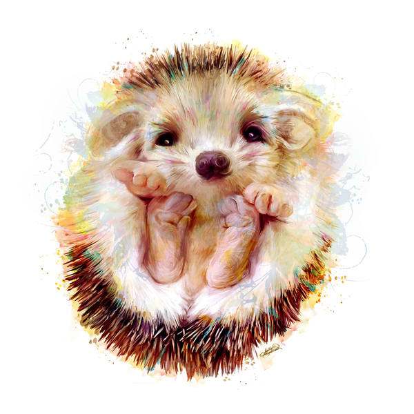 Peeko baby adorable hedgehog art painting by Sally Barlow