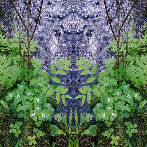 Mirror 912_Idyll At The Creek