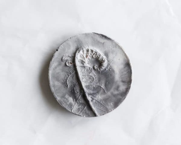 Growing Fern  Art | Cool Art House - online art gallery with hip emerging artists. Collect cool art you can view on your own wall before you invest!