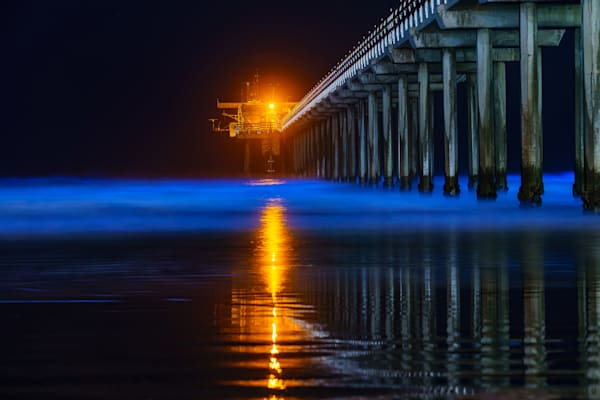 Bioluminescence at Scripps Pier, La Jolla by McClean Photography Original Wall Art