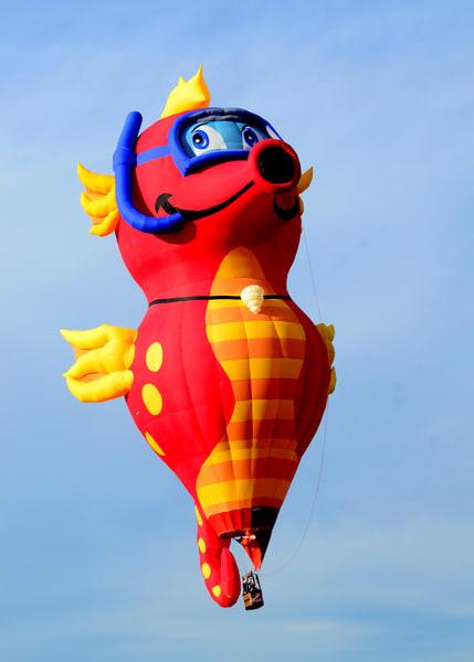 Snorkeling Sea Horse Hot Air Balloon Art   Bellz Artistry