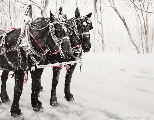Rideau Hall Horse Team Art   Julie Berthelot