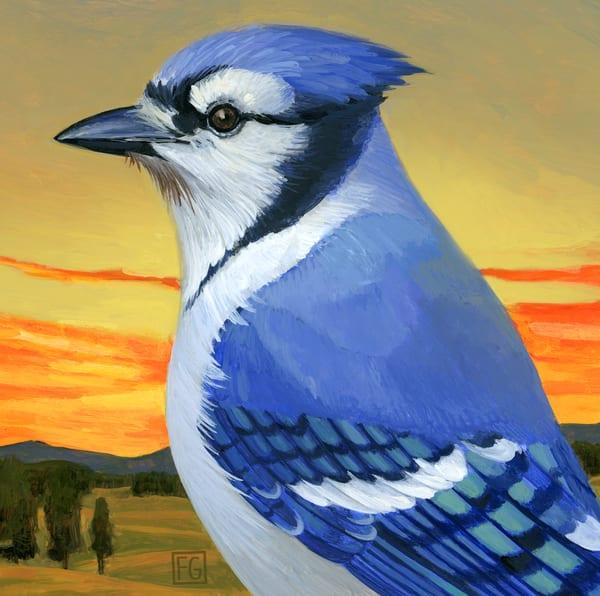 Blue Jay | Studio Girard