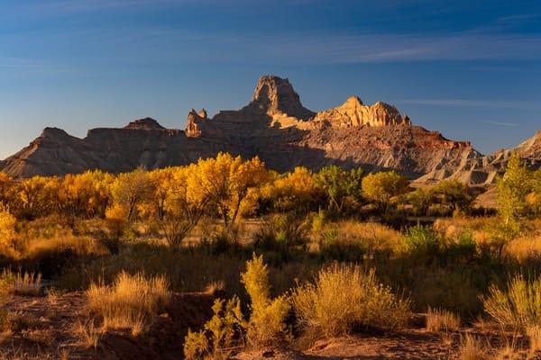 Desert Morning  Photography Art | Alex Nueschaefer Photography