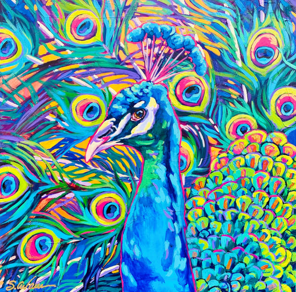 Royal Blue Peacock