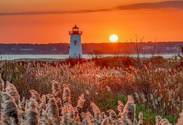 Edgartown Light Sunrise Reeds Art | Michael Blanchard Inspirational Photography - Crossroads Gallery