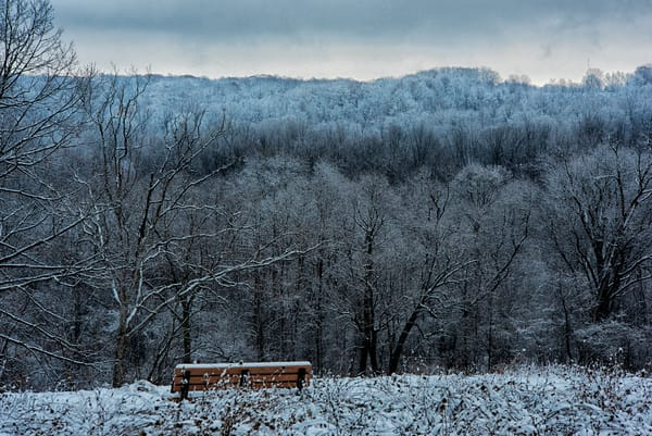 Solace Winter Valley Bench