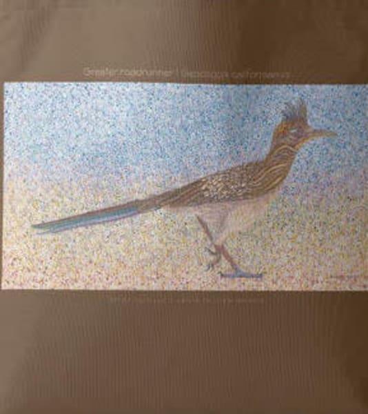 Greater Roadrunner Tote | Birds by Boyd