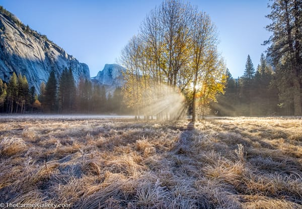 Autumn Sunrise Yosemite Art | The Carmel Gallery