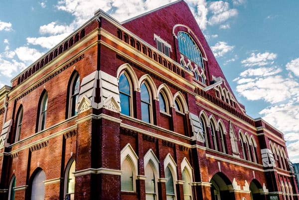 The Ryman Art | Anna Jaap Studio