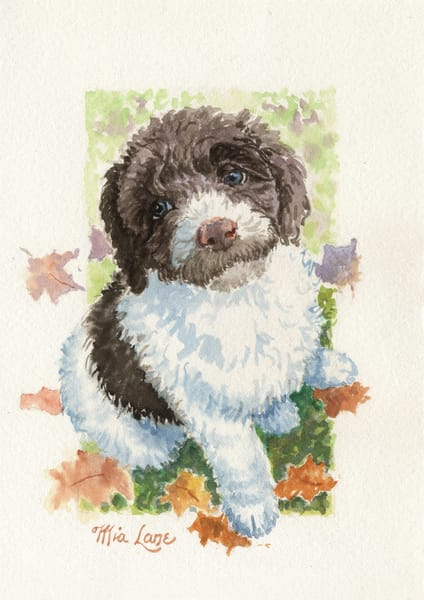 Poodle Pup  Original Water Colour Art | Mia Lane