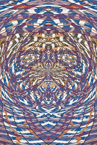 Symmetries #8