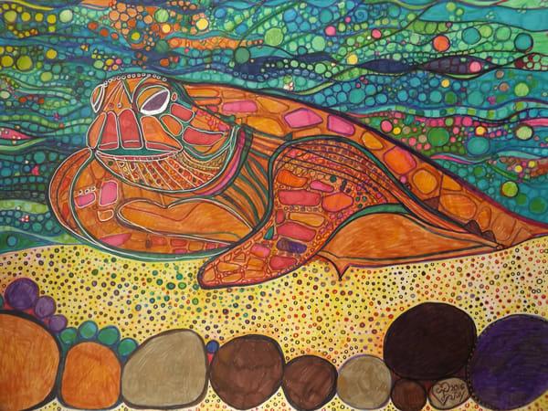 Sea Turtle Art   Cynthia Christensen Art