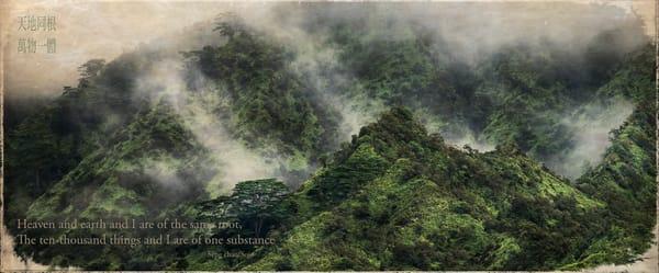 Ten Thousand Things Photography Art | Ed Sancious - Stillness In Change