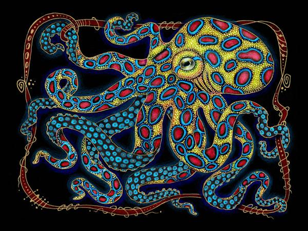 Blue Ringed Octopus Art | Kyle Creative