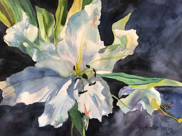 Lily Light | Jan Thoreen Lewis Fine Art