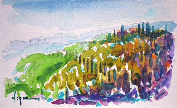 Original Watercolor Painting Tuscany Vineyard by Dorothy Fagan