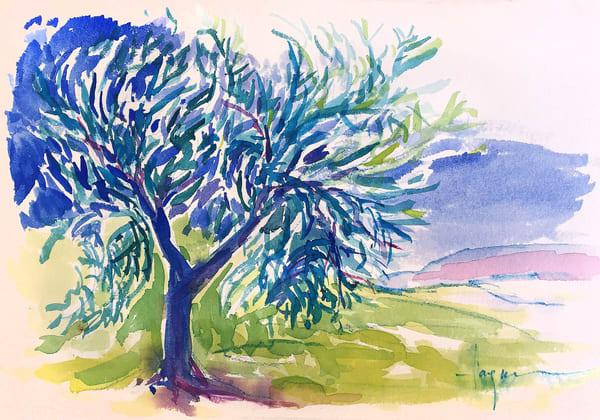 Olive Tree Watercolor Painting, Original Art by Dorothy Fagan