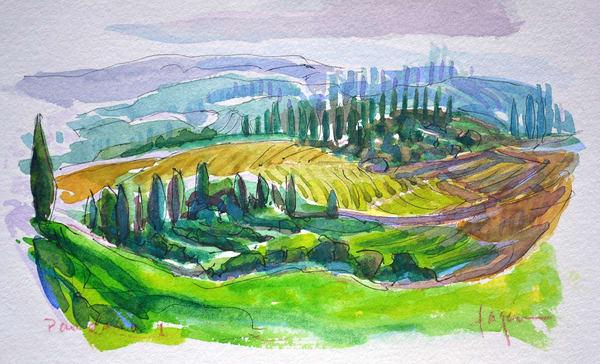 Tuscany Vineyard Painting, Original Watercolor by Dorothy Fagan