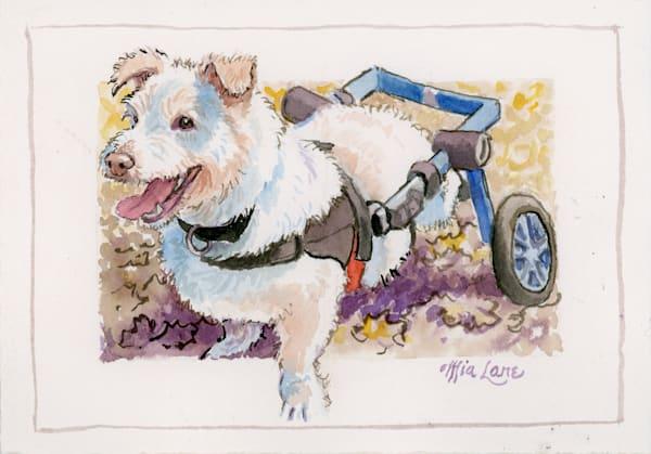 Wheeled Dog  Original Water Colour Art | Mia Lane