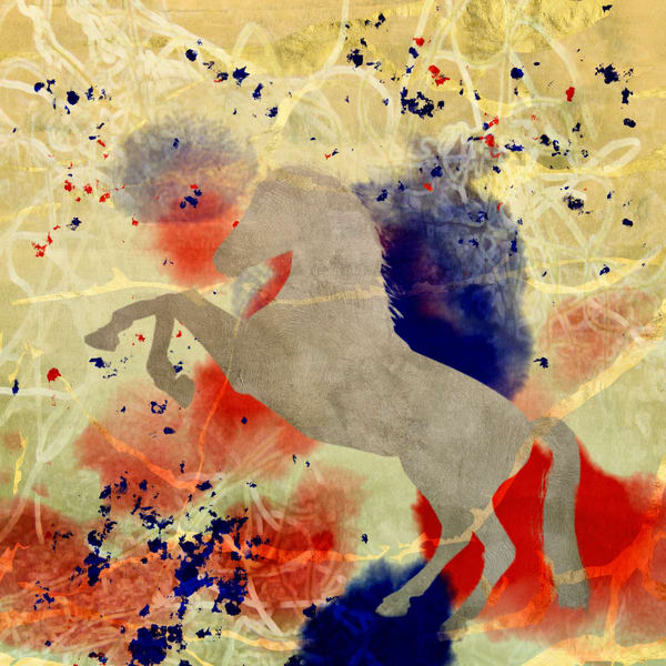 Horse White Art | R.j.Ricci Art