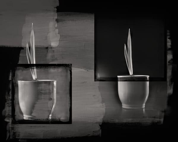 Pots Art | R.j.Ricci Art