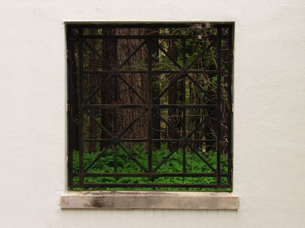 Cranbrook 56 May 3 2020 Art | Lillith