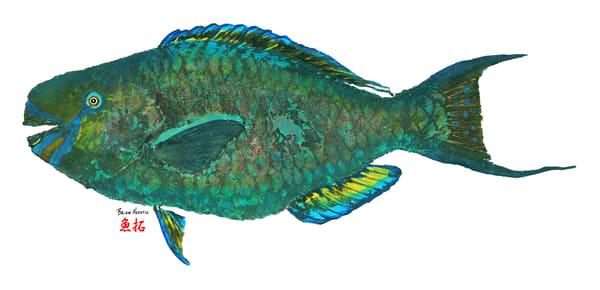 ParrotFish Male