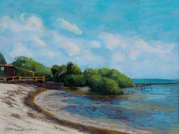 Mangroves, Caye Calker, Belize  Art   Waif Mullins Art