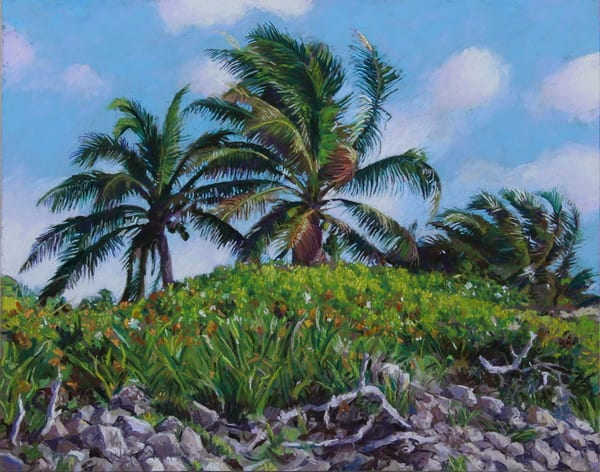 3 Palms, Akumal, Mexico Art | Waif Mullins Art