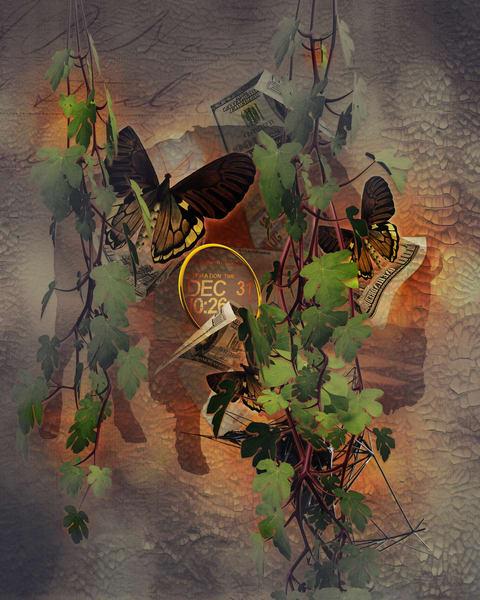 Buffalo Butterfly Art | R.j.Ricci Art