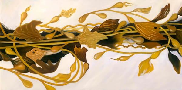 Infinity Seaweed Art | Margaret Biggs Fine Art