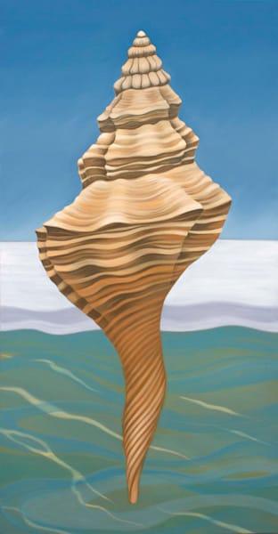 Florida Horse Conch Art | Margaret Biggs Fine Art