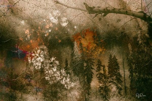 Sierra One  Art | R.j.Ricci Art