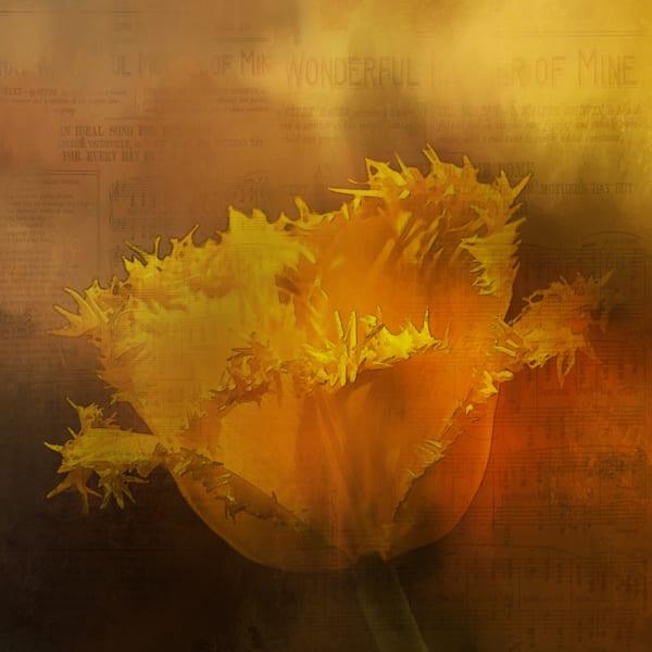 Yellow Flower Art | R.j.Ricci Art