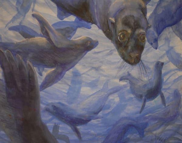 Seals With A Kiss Art   Nosco Fine Art