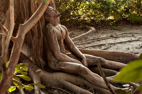2013 Banyan Roots Florida Art | BODYPAINTOGRAPHY