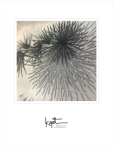 Electrostatic Posters/Postcards