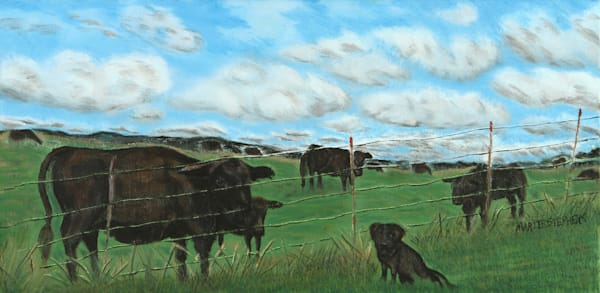 Are You My Momma?  Black Lab in the Pasture with Black Angus Cows by Marie Stephens Art