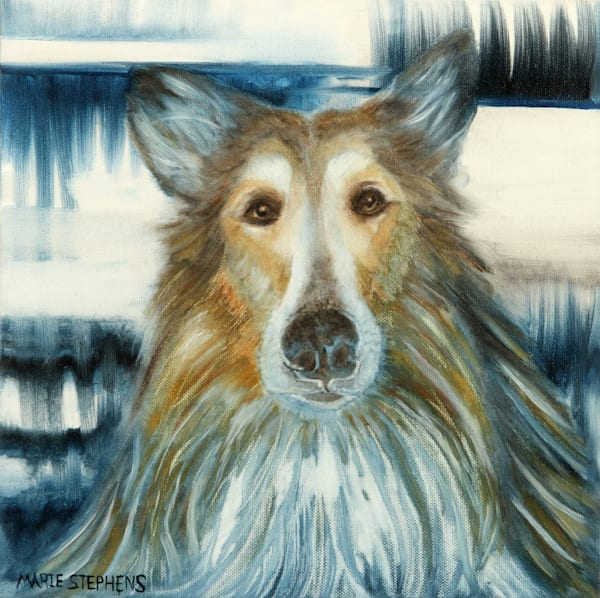 Collie Portraits for the Collie Lover by Marie Stephens Art