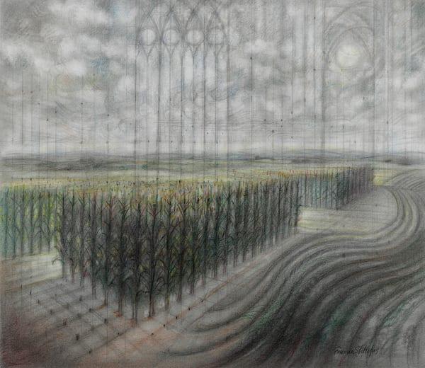 Field Hymn Art   Freiman Stoltzfus Gallery