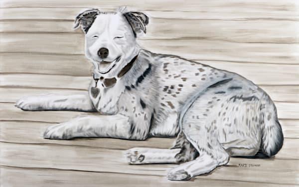 Australian Shepherd Dog Painting by Marie Stephens Art