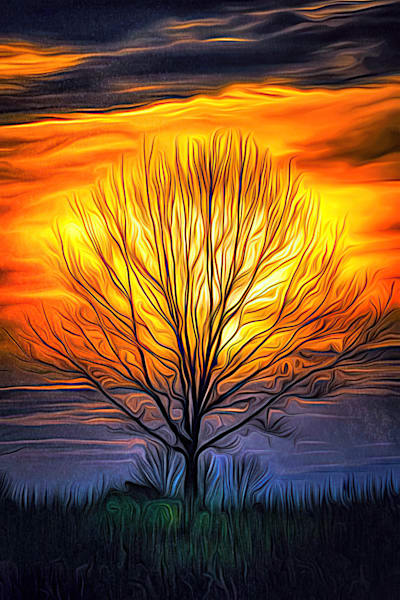 """""""Trees In My Dreams"""" Photography Art 