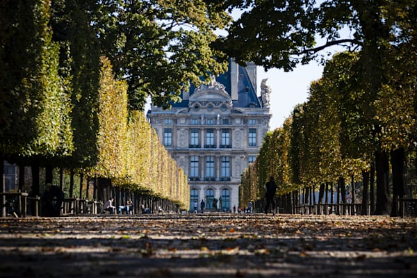 Tuileries Garden Paris Fall Day