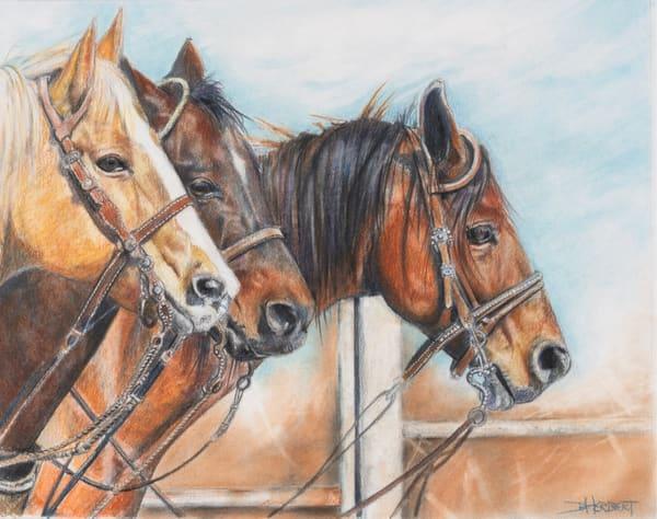 """Tres Amigos"" Art | debherbertart"
