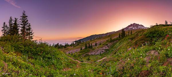 Paradise Art | Jeffrey Knight Photography