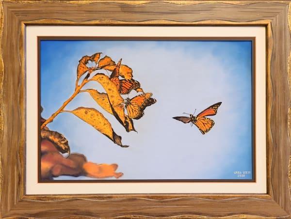 Roosting Monarchs Art   Greg Stett Art